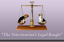 The Veterinarian's Legal Beagle